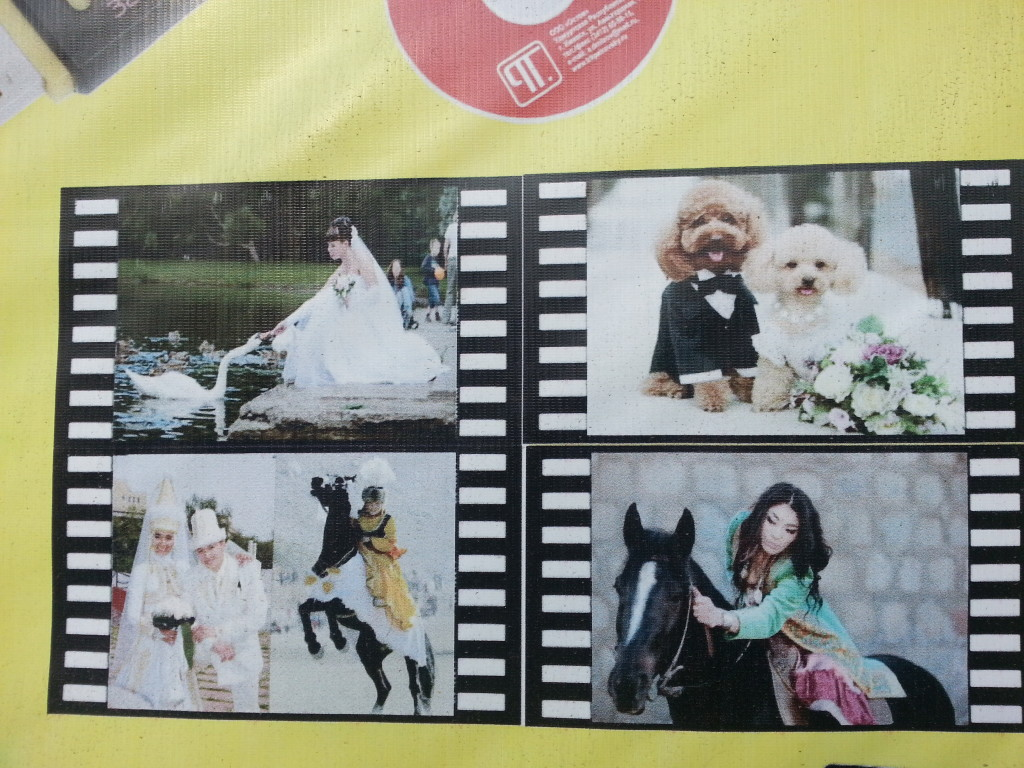 Look at these happily married poodles